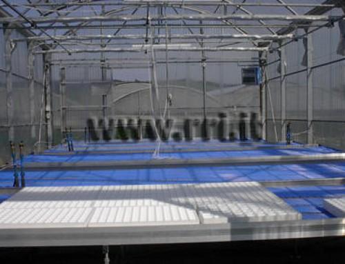 Riscaldamento delle coltivazioni in serra